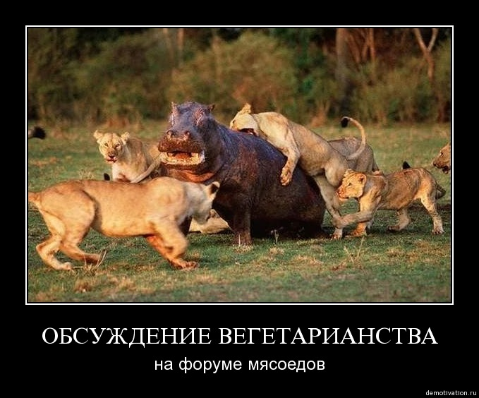 http://zarubezhom.com/Images/Veggi2.jpg