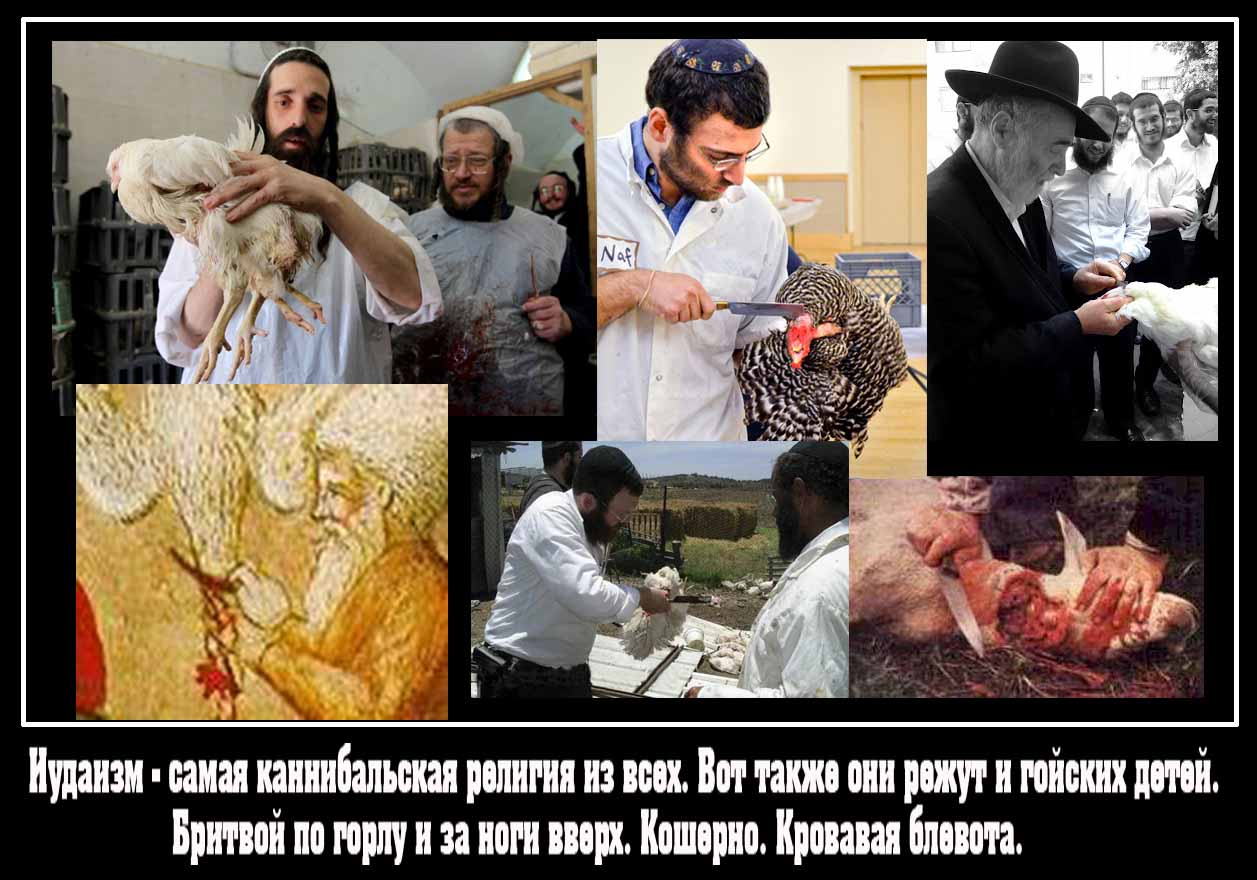 http://zarubezhom.com/Images3/Kannibaly-kosher2.jpg