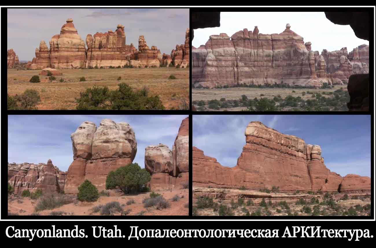 Что думают американцы о русских 24 фотография